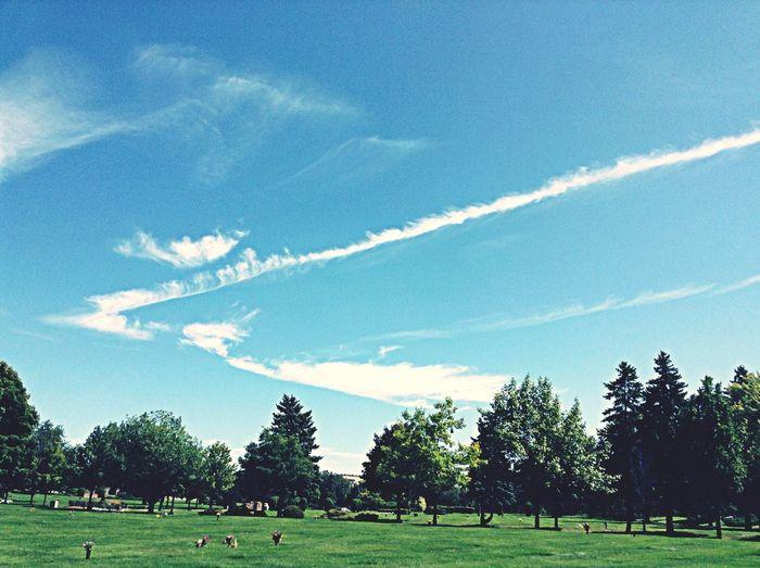 HighlandMemoryGardens Landscape First Eyeem Photo Blue Sky