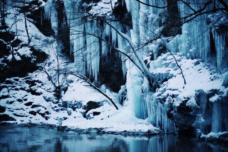 ice EyeEmNewHere EyeEm Best Shots The Week on EyeEm Planar50/1.4 Zeiss Carl Zeiss Jena Japan Saitama Cold Temperature Snow Winter Ice Nature Frozen Beauty In Nature