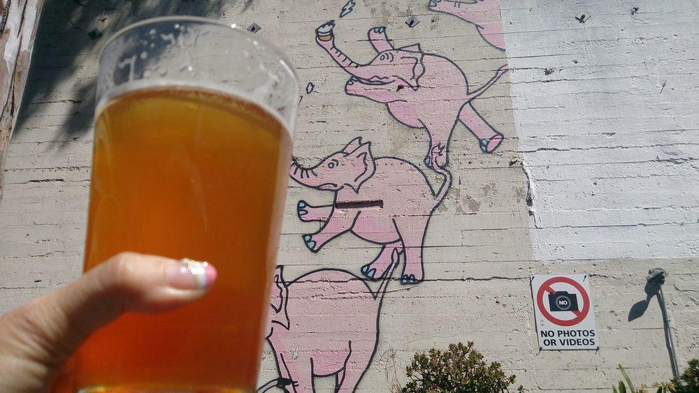 Zeitgeist @ San Francisco Craft Beer Drinking Beer Pink Pink Elephants