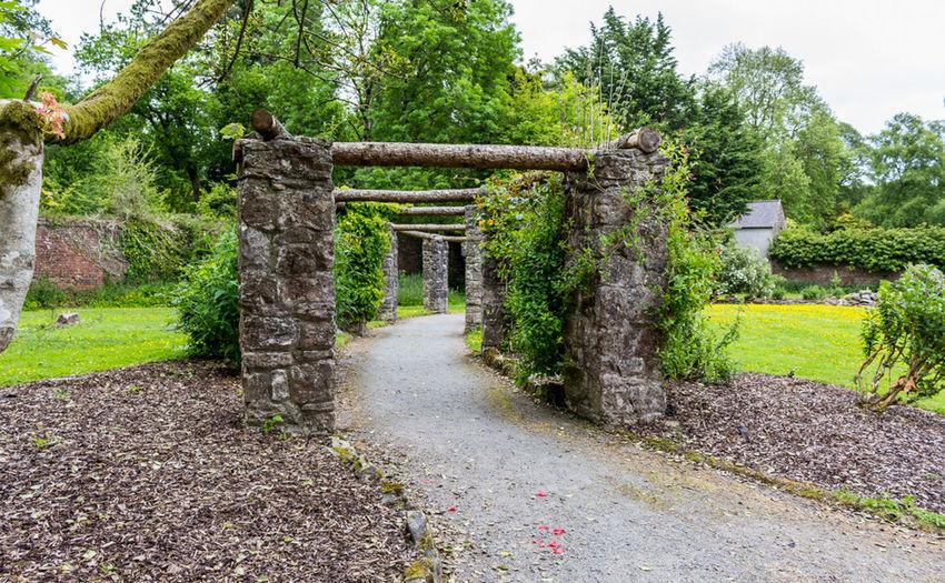 Check This Out Taking Photos Architecture Garden Flowers,Plants & Garden Walking Around EyeEm Best Shots Northern Ireland Forest Park