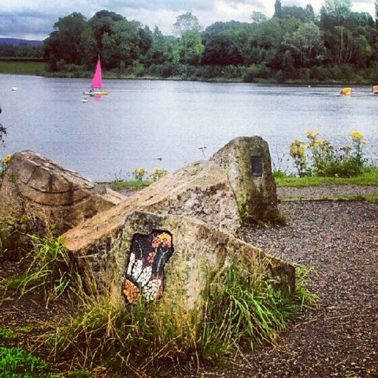 Manchester Gorton Reservoir Mosaic