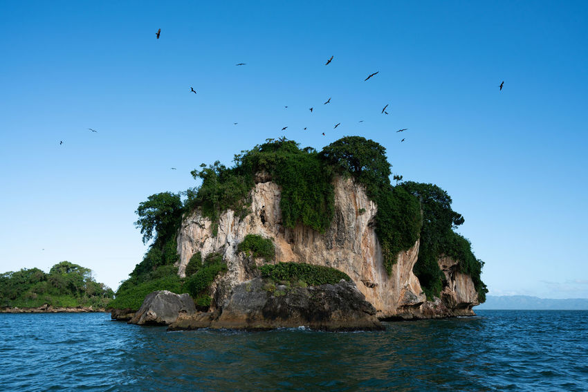 Los Haitises National Park - Dominican Republic. Dominican Republic Los Haitises Animal Animal Themes Animal Wildlife Animals In The Wild Beauty In Nature Bird Clear Sky Flock Of Birds Flying Group Of Animals Large Group Of Animals Nature No People Rock Samana Scenics - Nature Sea Sky Vertebrate Water Waterfront