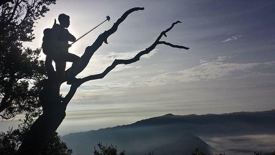 Live in the moment.Mountbromo Indonasia Exploreindonasia Travelling Travelgram Goprohero4 Mountains Goprooftheday