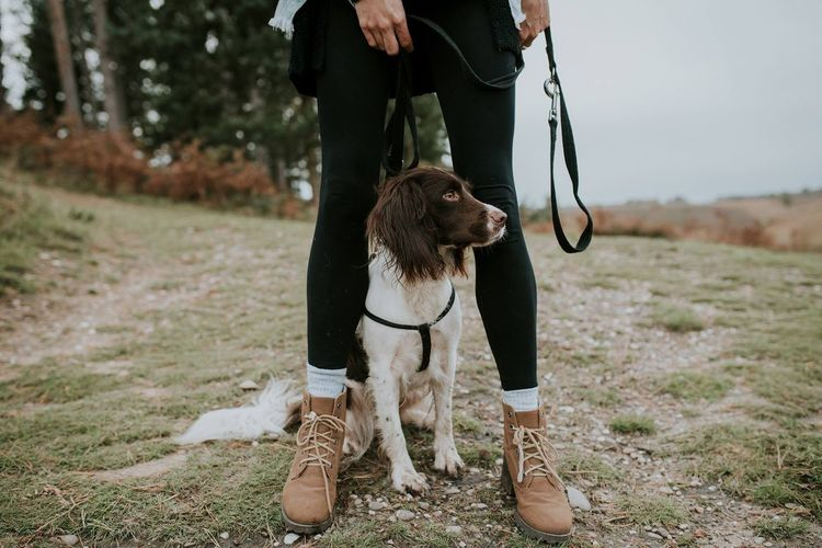 Dog Pets One Animal Pet Leash Domestic Animals Low Section One Person Human Leg Real People Standing Outdoors Dog Walking Springer Spaniel Dogs Dogs Of EyeEm Dogslife Animal Themes Nature