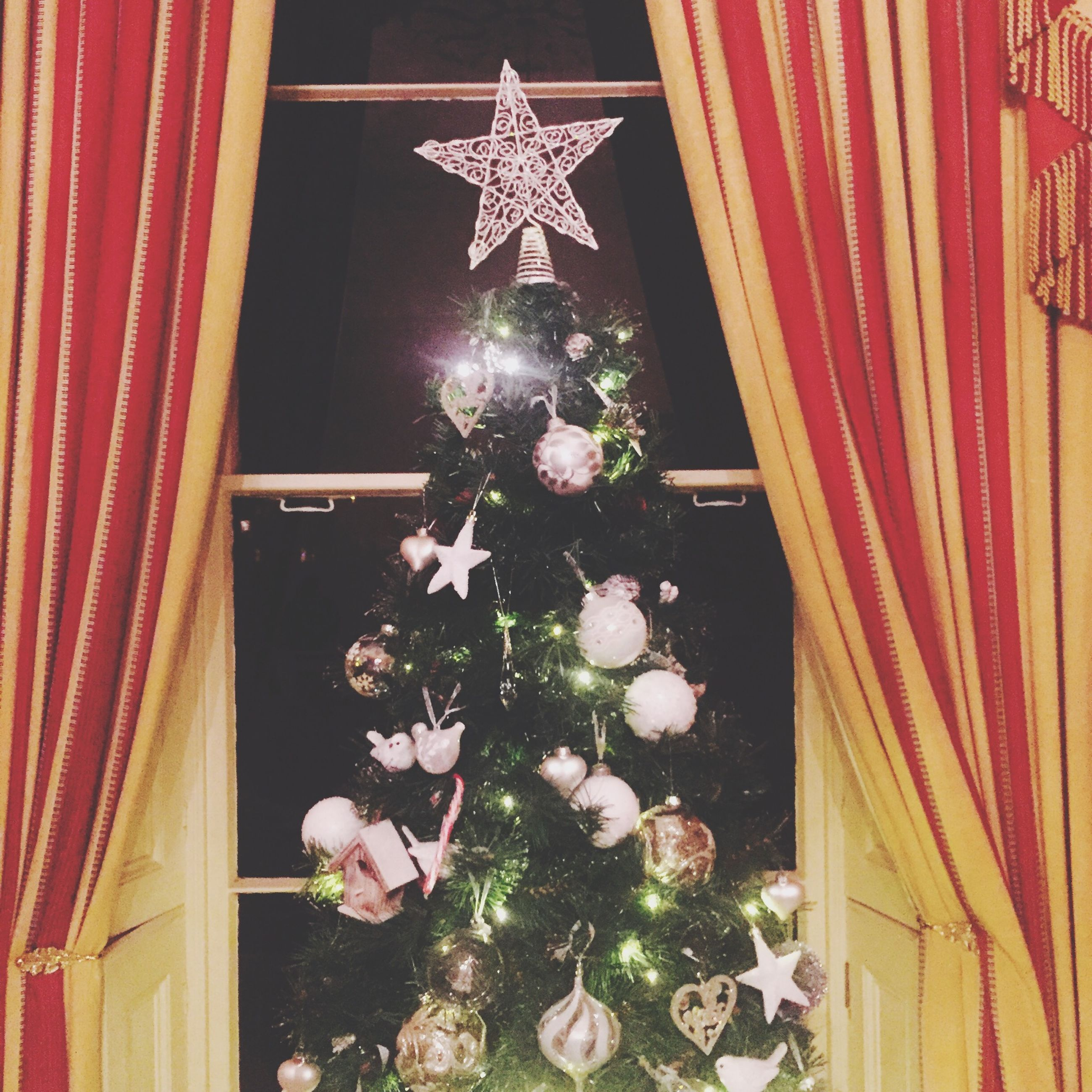 flower, decoration, indoors, hanging, celebration, illuminated, religion, built structure, architecture, christmas, night, decor, house, home interior, building exterior, lighting equipment, low angle view, no people, tradition