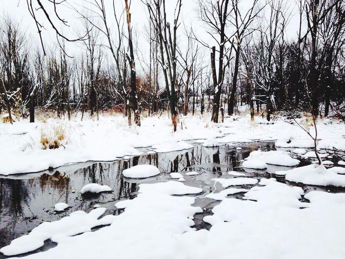 NaturesBest Winter Wonderland Water