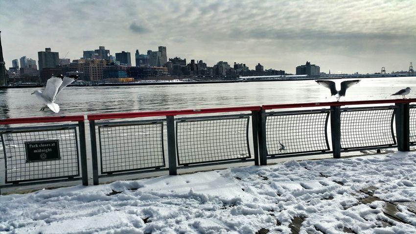 The Places I've Been Today South Street Seaport Hello World Tadaa Community Brooklyn Bridge  AMPt Community WeAreJuxt.com