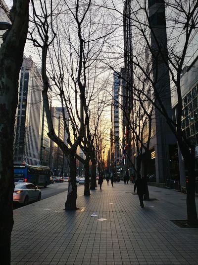 City Street Sunset Cityscape Citystreet Leave The Office V20 Seoul, Korea