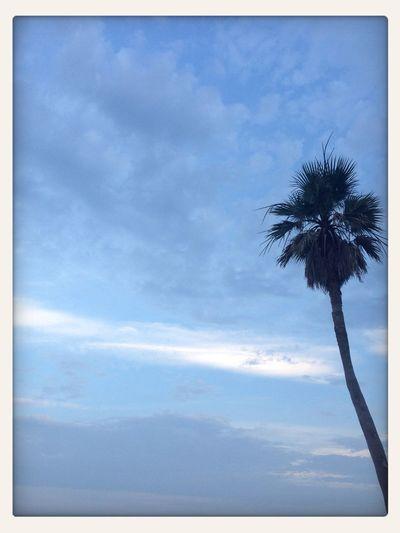Enjoying Life Clouds And Sky
