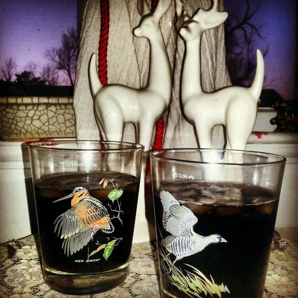 Birds Drinking Glasses Whiskey Super Bowl