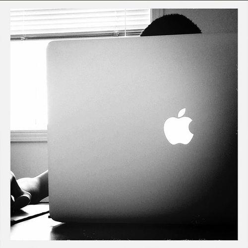 Web Development Working Cofferepublica uxui wireframe adobe designers uxui wireframe macbookpro macbookprolife apple trabajo trabaho instawork dreaming st branding master