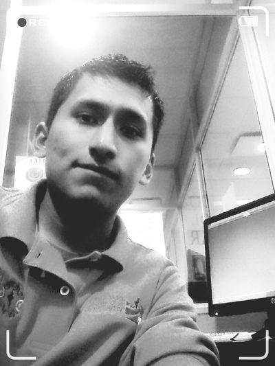 Vive libre. Working Hard