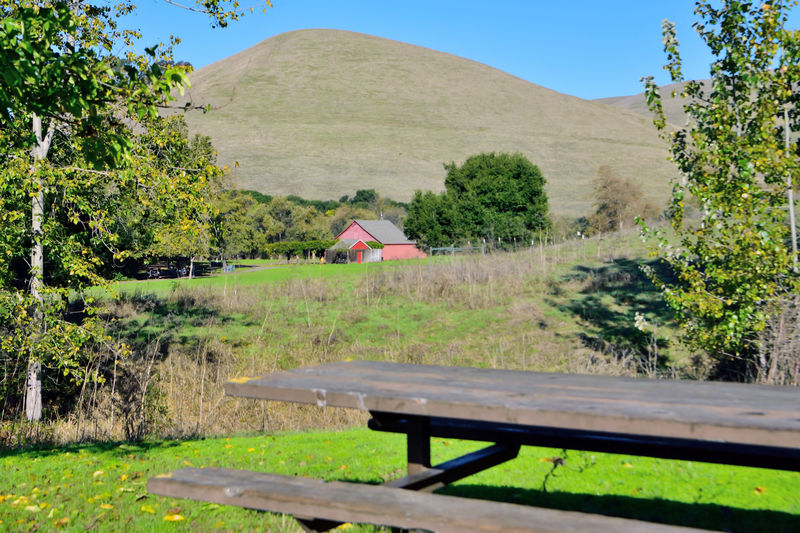 Garin Regional Park 1 Hayward,Ca Garin Ranch East Bay Regional Park District Rolling Hills Steep Canyons Hiking Trails Equestrian Trails Garin Barn Visitor Center Trees Picnic Table Nature Beauty In Nature Landscape Landscape_photography Landscape_Collection Landscape_lovers Lush Valley