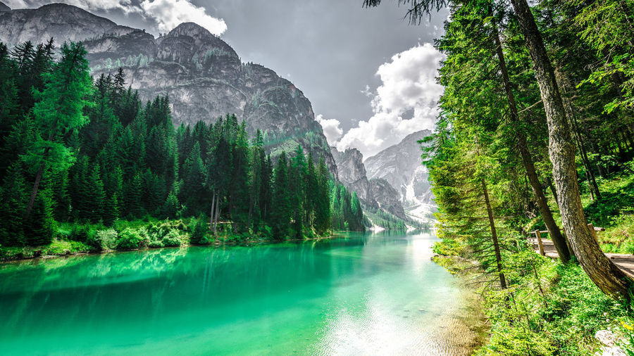 Scenic view of lake amidst trees in forest at pragser wildsee against sky