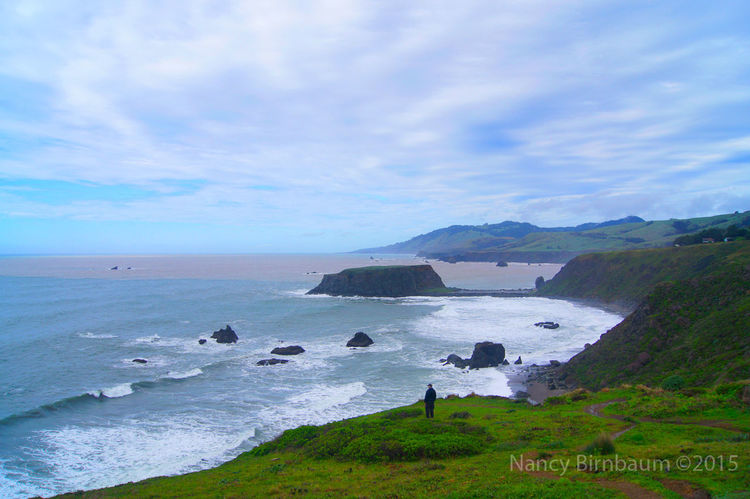 River's End Between Storms Beauty In Nature Cloud - Sky Coastline Day Green Color Horizon Over Water Landscape Mountain Nature Non-urban Scene Outdoors River Meets Ocean  River's End Rocky Shore Scenics Sea Shore Sky Sonoma Coast Tranquil Scene Tranquility Water Hidden Gems