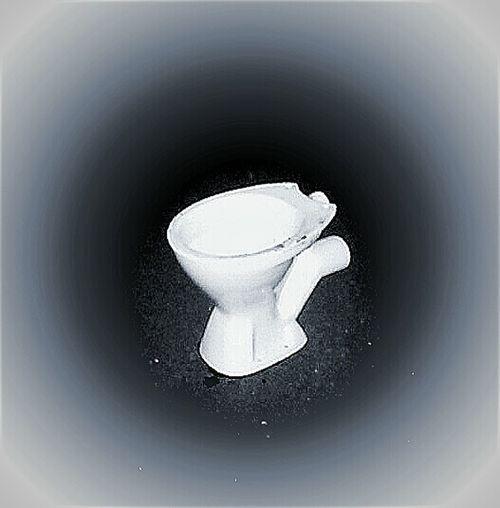 Vignette Shit! Vignette Wc The WC Crapper ThomasCrapperAndCompany Dunny Thomas Crapper & Co In The Toilet Poo Toilet Water Closet Shitter Thunderbox Loo The Dunny Toilets Toilet Art Toilet Time🚽 The Toilet The Toilet In Dah Background Lol!:9 The Toilet Seat Cover Challenge I DARE U! Toilet Bowl