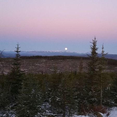 Wish I had my NikonD5100 , cell phone gives it no justice. Beautiful Fullmoon this morning. Northernbc Winter Mountians Moon Morningtime Beautifulbc Canada Natgeolandscape Natgeo