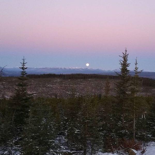 Wish I had my NikonD5100 , cell phone gives it no justice. Beautiful Fullmoon this morning. Northernbc Winter Mountians Moon Morningtime Beautifulbc Canada Natgeolandscape Natgeo