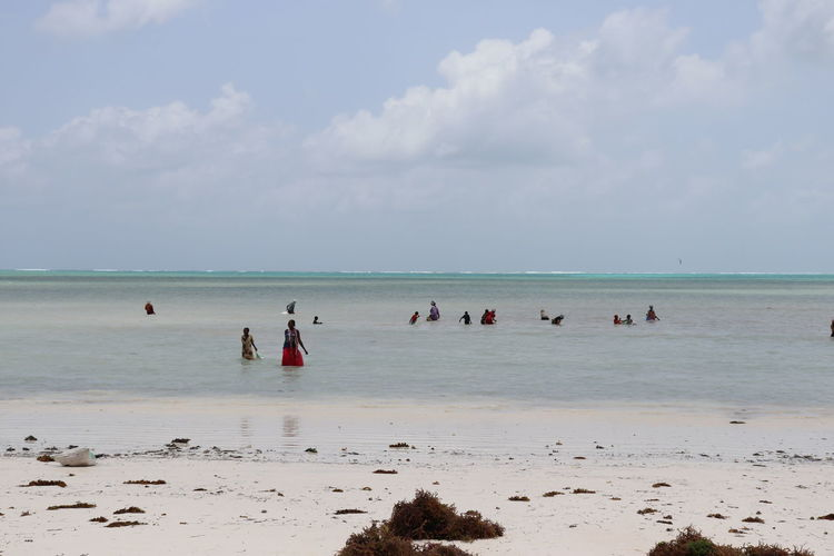 Zanzibar Beach Beauty In Nature Cloud - Sky Crowd Group Of People Holiday Horizon Horizon Over Water Land Leisure Activity Nature Outdoors Real People Sand Scenics - Nature Sea Sky Travel Destinations Trip Vacations Water Women