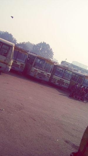 Morning bus stop pic..