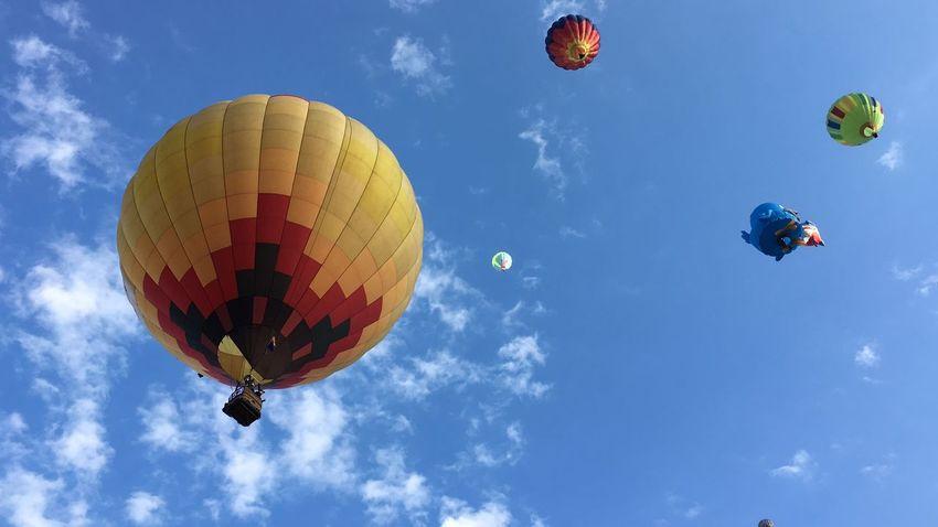 Albuquerque IPhoneography Balloons Newmexico ShotoniPhone6s Balloonfiesta  Igersabq HotAirABQ15 Wonderland Capture The Moment