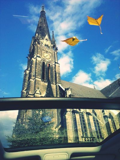 Sun Roof Car Ride  Autumn The View From My Window