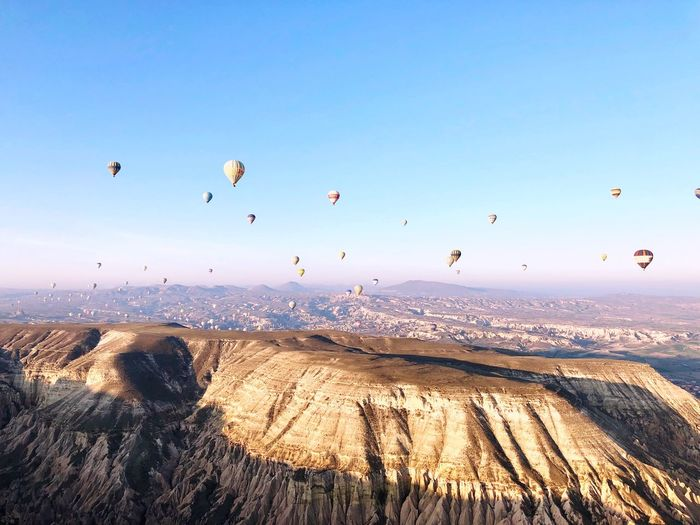 Daydream Turkey