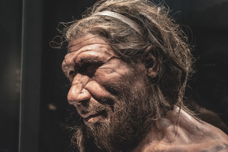 Adult Beard Close-up Contemplation Facial Hair Focus On Foreground Hair Hairstyle Headshot History Human Face Human Hair Leisure Activity Lifestyles Looking Looking Away Males  Mature Adult Mature Men Men Neanderthal One Person Portrait Prehistoric Real People