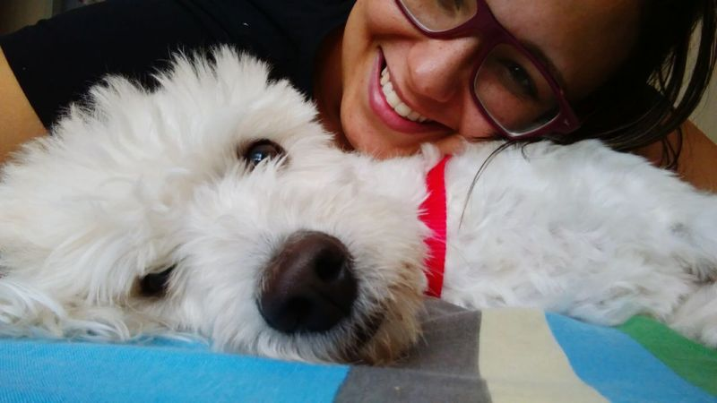 Meu dog.. Amo muito! Dog Looking At Camera Domestic Animals Poodle🐩 Poodletoy Smiling Happiness Poodlepuppy Adult