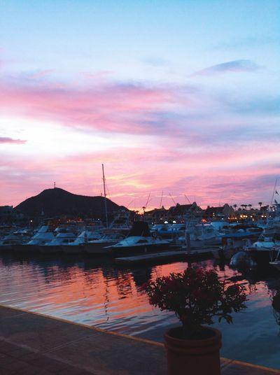 Cabo San Lucas Love ♥