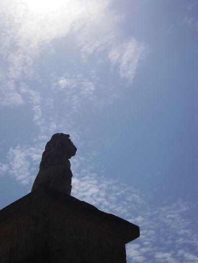 Lion king on his pillar against sky Lion King  Lion Statue On Pillar Against Sky Sky Low Angle View