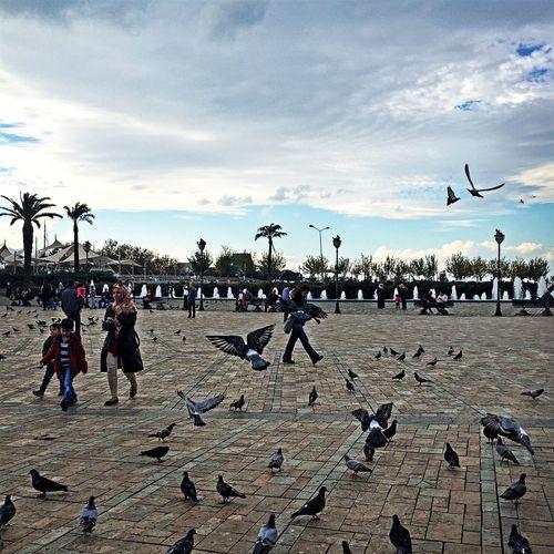 Mutlu haftasonları 💕🙋🏻 Hello World Taking Photos Enjoying Life Izmir Konak Kumru