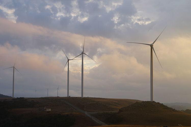 Windmill Rio Do