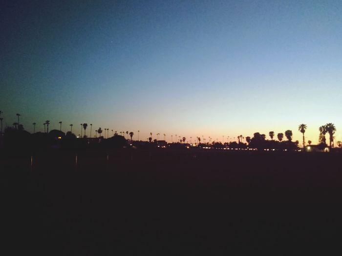 Astronomy Sunset Tree City Silhouette Sky
