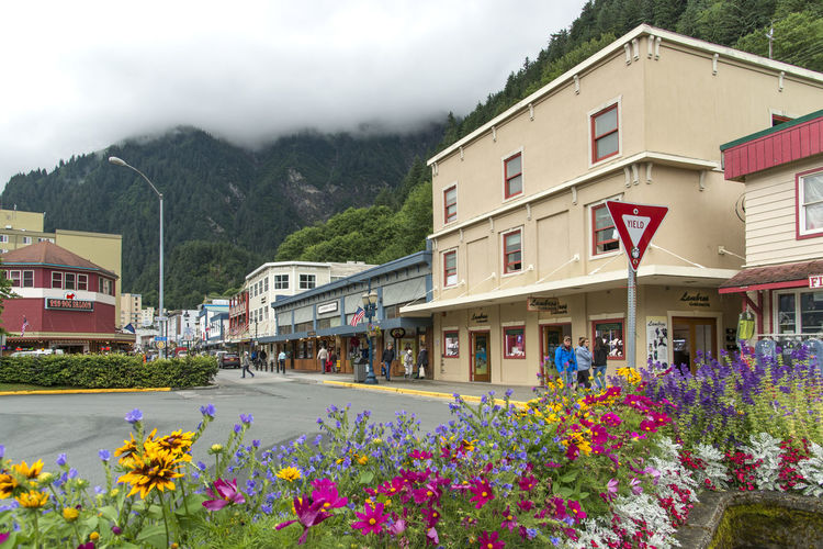 Building Exterior Architecture Built Structure Plant Flowering Plant Flower Nature Building Mountain City Day Street Outdoors Stores Shopping Town Overcast Skies Summertime Alaska
