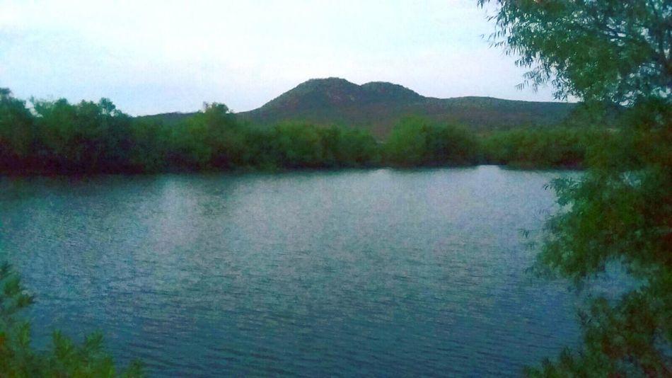 Nature Agua Naturaleza🌾🌿 Naturaleza Mexicana Naturaleza🌵🌻🎶 Water Lago Queretaro