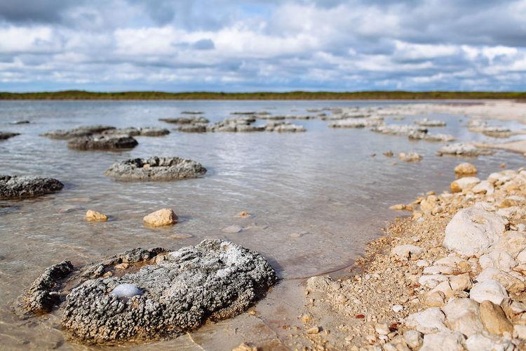 Lake Thetis