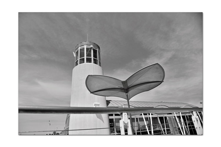 Observation Deck At Jack London Square 4 Embarcadero Cove Port Of Oakland, Ca. Art Is Everywhere Architecture Nautical Theme Architectural Feature Wave-rendered Awning Lookout Lighthouse Tower Ocean-tinted Glass Jack London Square Marina Nautical Fuel Depot Restaurant, Retail & Entertainment District Waterfront Opposite Shore Alameda Marina Monochrome_Photography Monochrome Black & White Black & White Photography Black And White Collection  Black And White Deck Seating Whales Tail Umbrellas