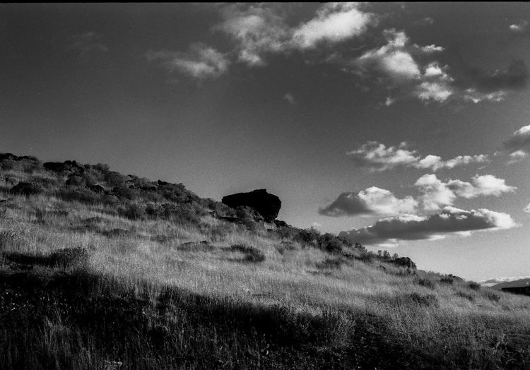 Rock on a hill Desert Film Nikon FA Rock Sparks Nevada Black And White Day Delta 100 Field Grass Landscape Mammal Nature Nevada No People Outdoors Rock On A Hill Sky