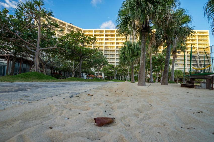 Autumn Beach Blue Sky EyeEm Holiday Ocean OKINAWA, JAPAN Onna-son Onna-village Palm Trees Resort Hotel Summer Tropical Climate Vacations