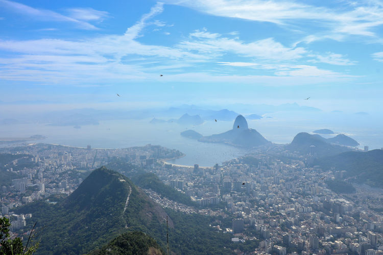 top view from río de Janeiro Rio De Janeiro Brazil Pan De Azucar Sea Cityscape Brazil Daytime City Cityscape Mountain Aerial View Blue Beauty Business Finance And Industry Modern Mountain Range Rocky Mountains Scenics Tranquility Tranquil Scene Idyllic