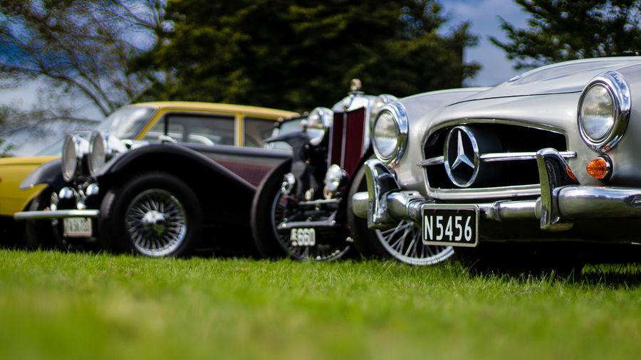 Grass Mercedes Oldtimertreffen Car Day Green Color Morsum Old-fashioned Oldtimer Speichenrad Sylt