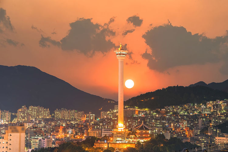 Busan city lights and Busan tower at night in Korea Blossom; Cherry Building; Landmark; Famous; Business; Pavilion; Natural Travel; Architecture Attraction; Flower; Spring; Clock Attractive; Space; Outdoors Background; White; View Busan; Tower; Korea Cityscape; Downtown; Pink; Urban; Scene; Place Republic; Sakura; Pusan South; Asia; City