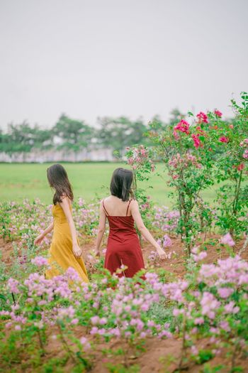 吹什么 Flower Flowering Plant Plant Real People Women Lifestyles Sky Beauty In Nature Young Women Nature Growth Day People Two People Clear Sky Young Adult Leisure Activity International Women's Day 2019