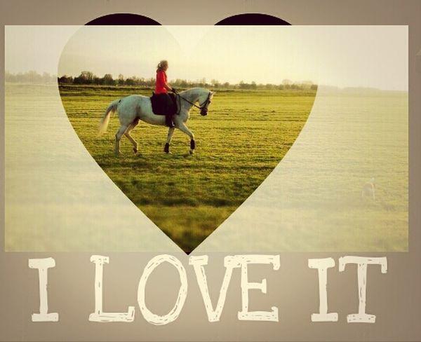 Riding My Horse Horse Horse <3 I Love It ❤