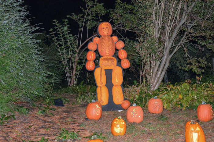 Pictures of New York City The Graphic City Anthropomorphic Face Autumn Celebration Day Field Food Food And Drink Freshness Grass Halloween Holiday - Event Human Representation Jack O Lantern Jack O' Lantern No People Orange Color Outdoors Pumpkin Scarecrow Spooky Vegetable