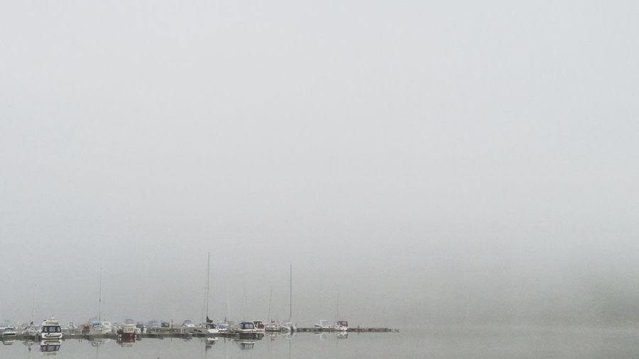 Cloudporn Misty Mornings The Minimals (less Edit Juxt Photography)