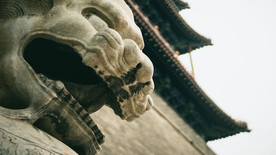 Ancient Civilization Art Beijing China Creativity Culture Documentary Lion Old Buildings Sculpture Shantou Traveling