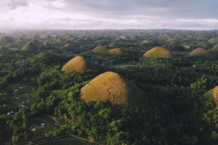 Chocolate Hills Bohol Philippines Island Jungle Aerial View Outdoors Vista Travel Destinations Exploring Travel Chocolate Hills Tourism Sunrise Adventure Sky Landscape Tranquility Tranquil Scene Countryside Calm Growing Non-urban Scene Remote Idyllic Scenics The Great Outdoors - 2019 EyeEm Awards The Traveler - 2019 EyeEm Awards