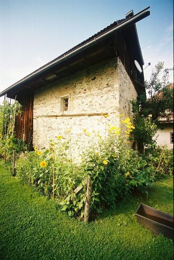 TheKeutschachamSee Kärnten Bauernhaus 200 Years Old Old House Ultra Wide Angle Analog Photography Ancient Architecture My Country In A Photo